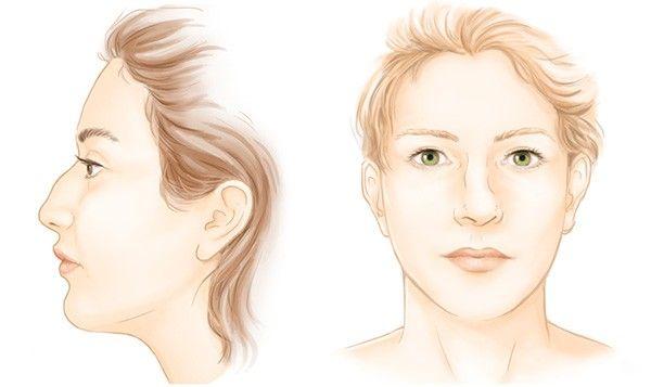 Les indications du nez